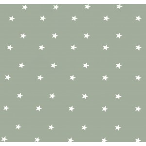Sage Green Stars Oilcloths PVC Tablecloths